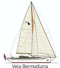 vela-bermudiana